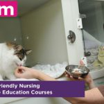 猫の動物看護師 教育プログラム Distance Education