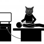 猫の内視鏡検査(胃カメラ)