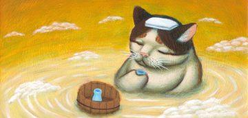 猫のお風呂、シャワーについて